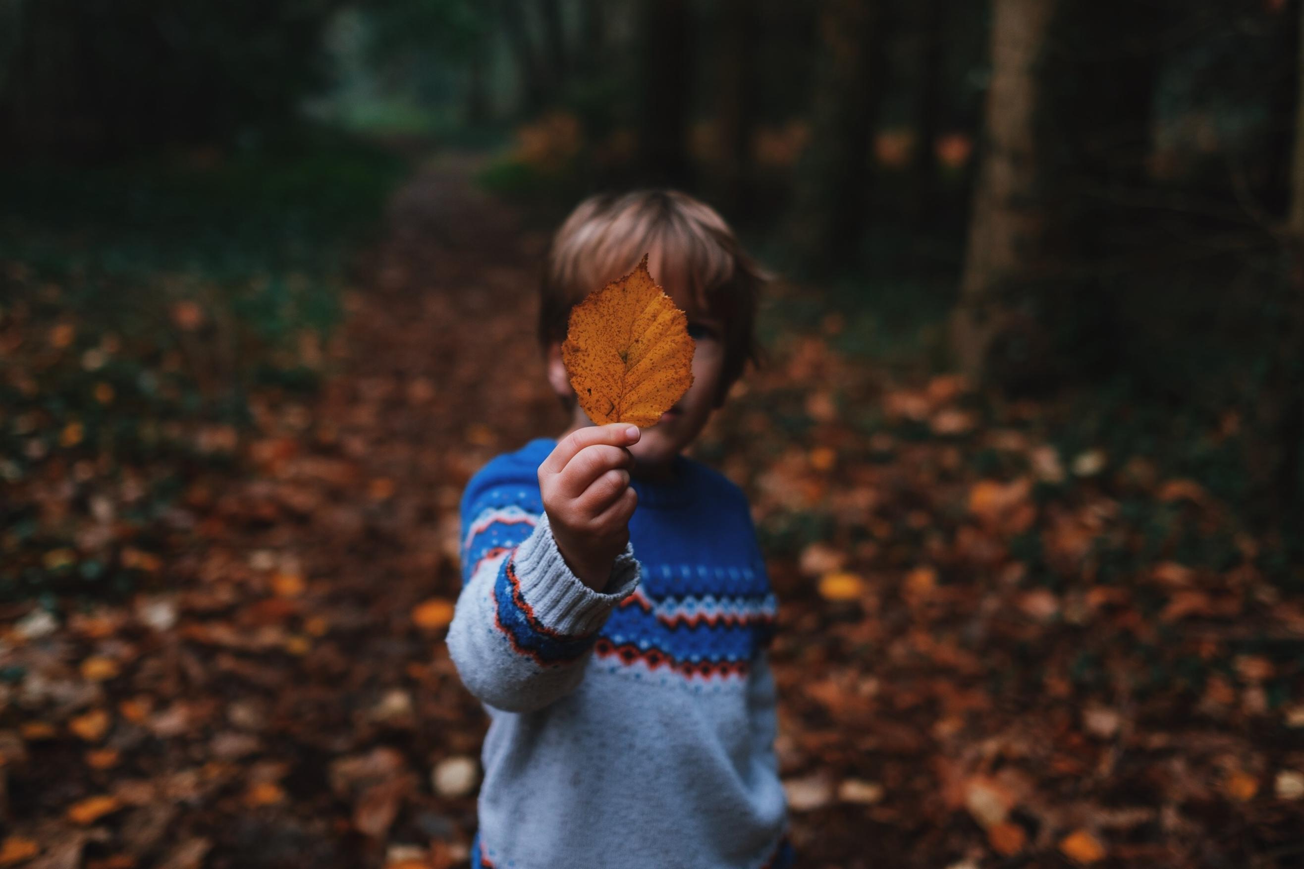 """Activité sur l'automne : """"À la faveur de l'automne"""""""
