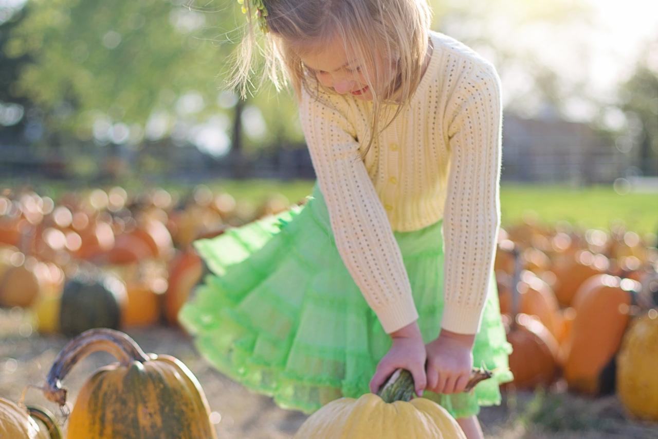 L'imagier de l'automne Montessori