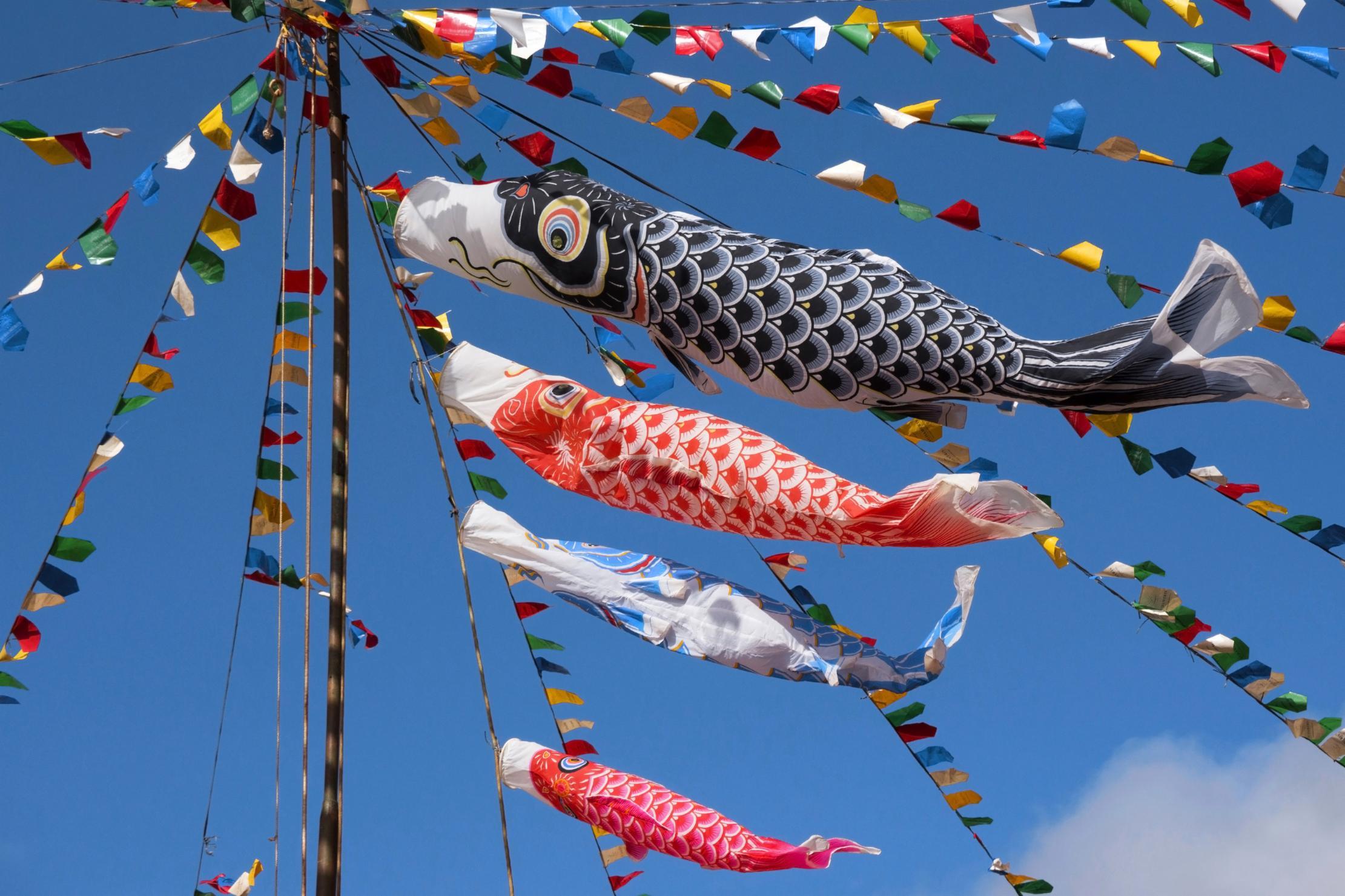Fabriquer un Koinobori : une tradition japonaise